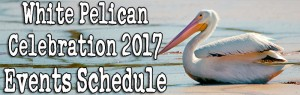 White Pelican Celebration 2017 Festival Schedule of Events
